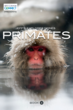 Jeff's Explorer Series: PRIMATES