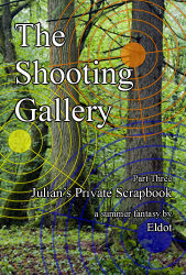 Front cover of The Shooting Gallery