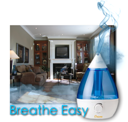 Crane Drop Humidifier for Cold Relief Remedies