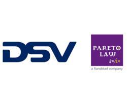 Pareto DSV
