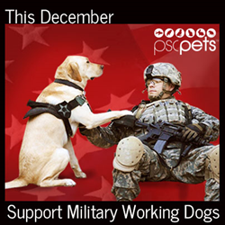 This December Support Military Working Dogs
