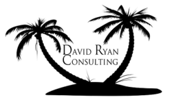 David Ryan consulting radio show, David Ryan consulting
