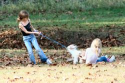 gI 103759 Family Pets Familie Thema Website Goes diervriendelijke Thanks To Tucker