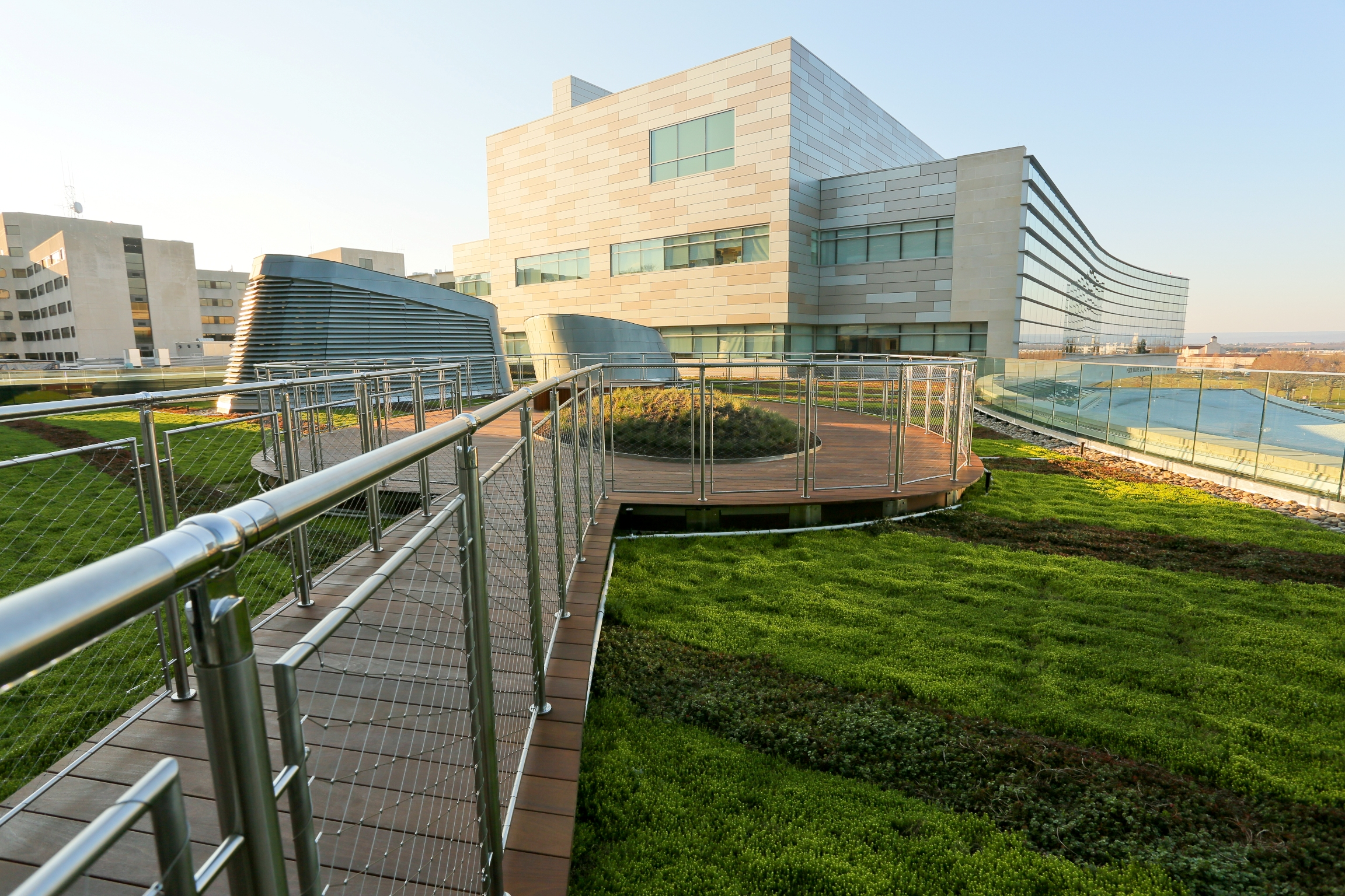 Green roofs offer natural views and access to green space for Terrace with roof