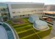 Green Roofs Offer Natural Views and Access to Green Space for Patients...