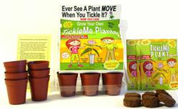 TickleMe Plant Greenhouse