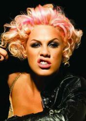 Pink Tour 2013
