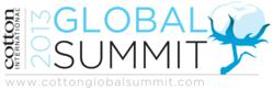 2013 Global Summit Logo