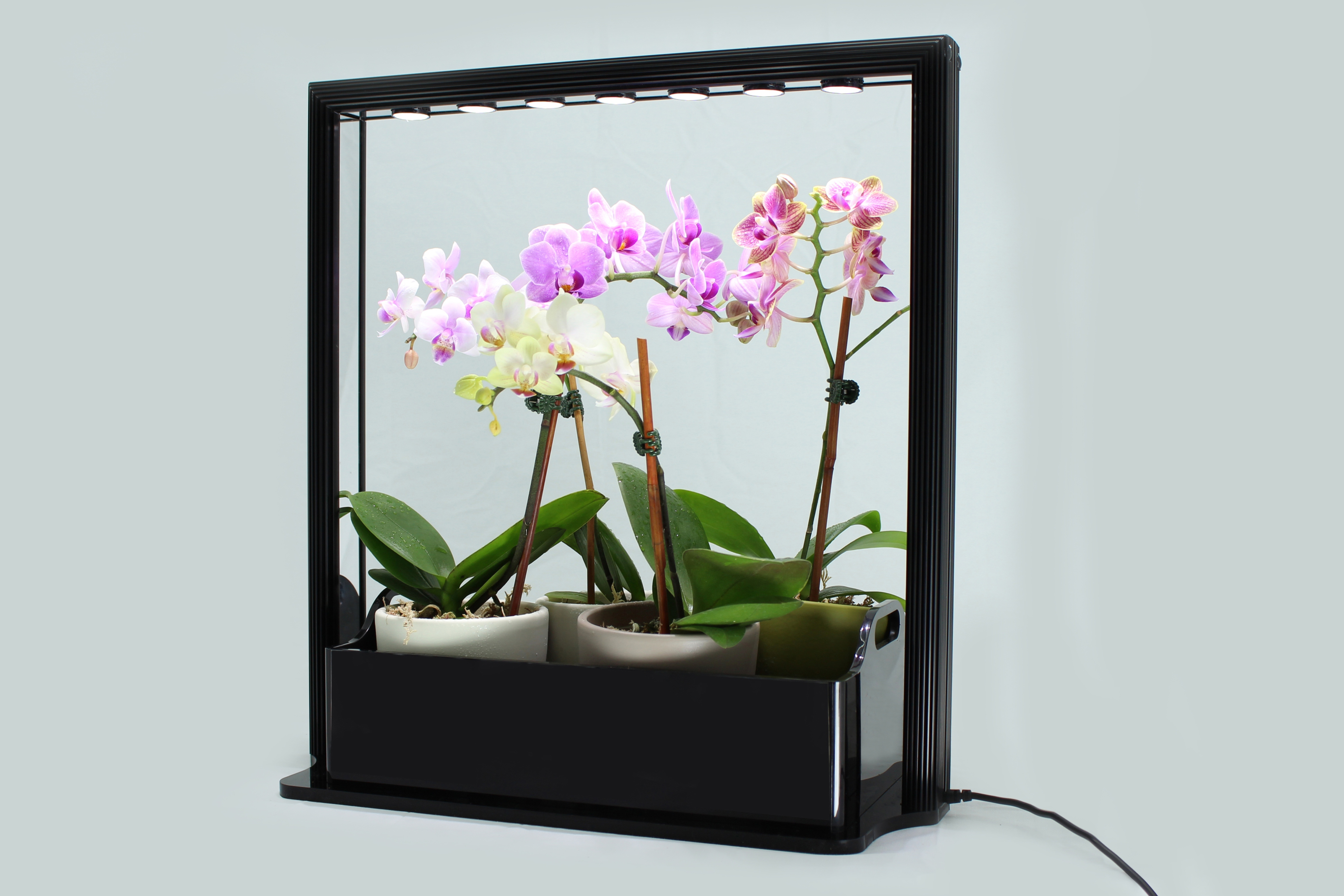 New Led Mini Garden From Inhomegardening Com Is A Great
