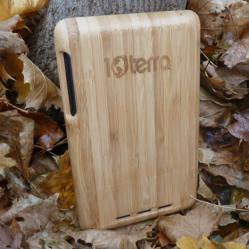 Bamboo Nexus 7 Case