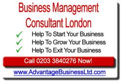 business consultants logo