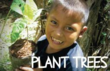 Give a Gift of Hope- plant trees