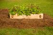Doc's Raised Garden Kit