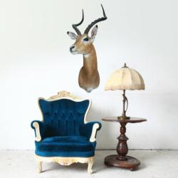 Wallsneedlove.com introduces adhesive taxidermy. Pictured: antelope head.