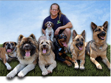 Dog Trainers Jeff Gellman and Sean O'Shea
