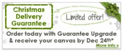 Canvasdiscount Christmas Delivery Guarantee