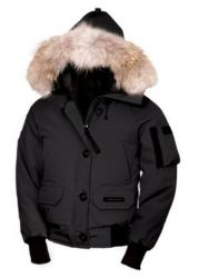 Winter Parka 2013