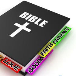 Foreign Language Bibles