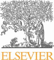 Elsevier Science & Technology Books