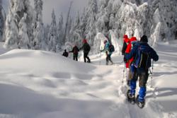 Snowshoe in British Columbia