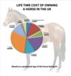 Cost of keeping a horse in the UK - http://www.pethaven.co.uk/2012/10/30/the-cost-of-owning-a-horse-hits-100000/