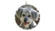 Personalized photo charm by Chief Furry Officer