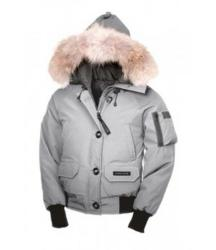 Winter Jacket Promotion