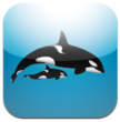 "Launched by BS Tøkni sp/f New App ""Whale List"" Features Photos..."