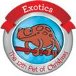 "The Twelfth ""Pet of Christmas"" Features Discounted Adoption Rates On Exotic Animals Including Turtles, Snakes And Birds"