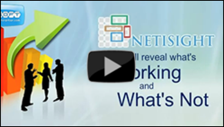Netisight's highly advanced web traffic analysis reaveals what's working and what's not