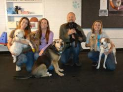 Andrea-Arden-Dog-Training-Staff-Members