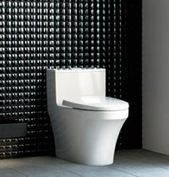 Dover Dual Flush Ultra Low-Flow Toilet From INAX