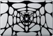 A custom spider web decal
