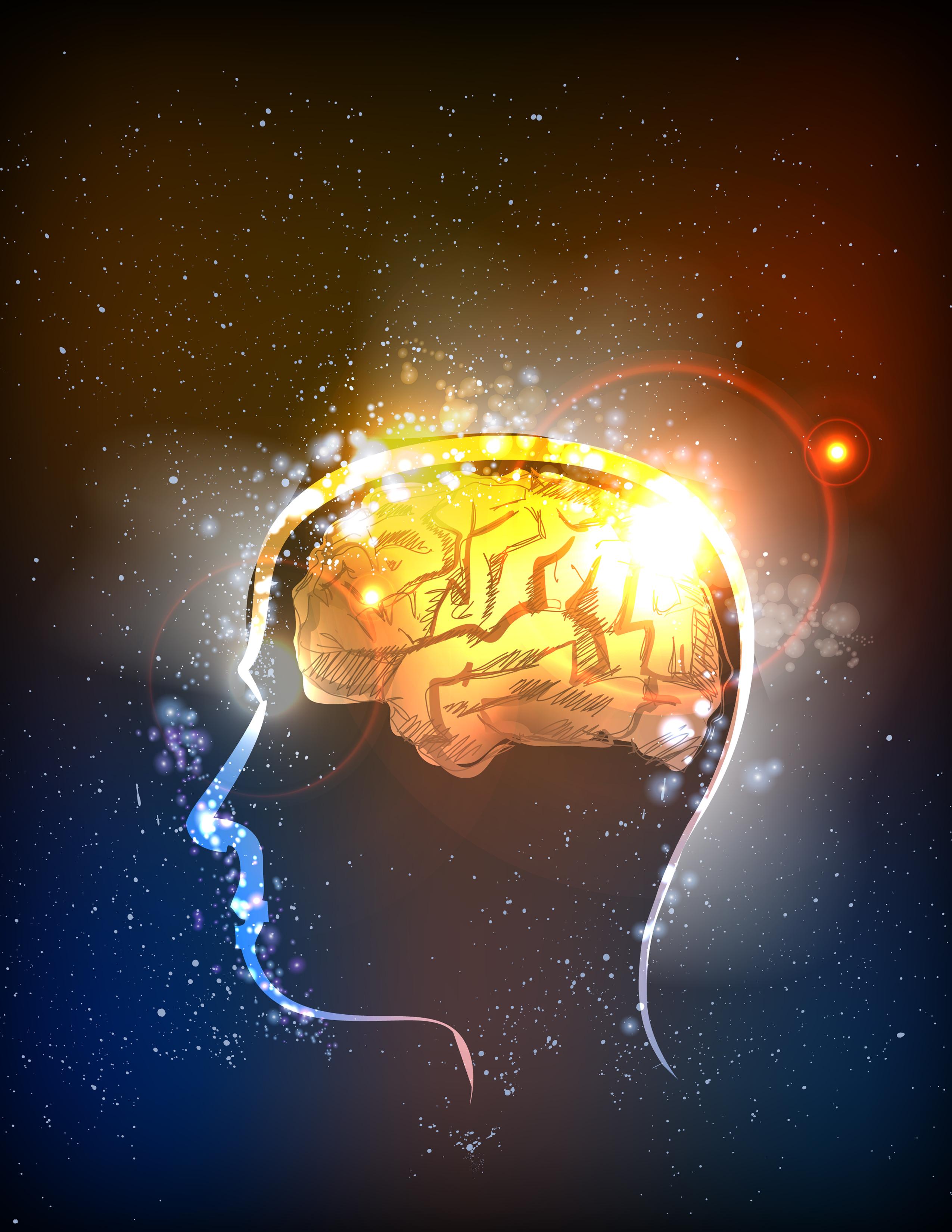 Foods that increase memory recall