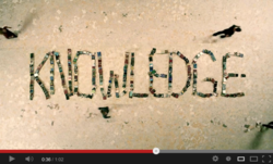 A screen capture of the new Scientology ad, 'Knowledge.'