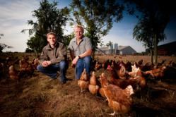 James and Adrian Potter, whose family have run Yorkshire Farmhouse Eggs - now officially the UK's largest producer of free range eggs - for over 30 years