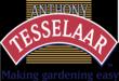 Tesselaar Logo