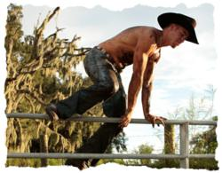 The Cowboy Crawl Mud Run is a challenging 5-kilometer run with daring obstacles on a real Florida cattle ranch.