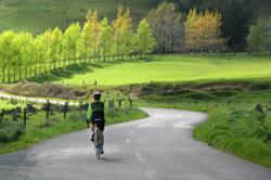 Cyclling through the wine region of Nelson, New Zealand