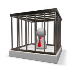 Prison.us.org
