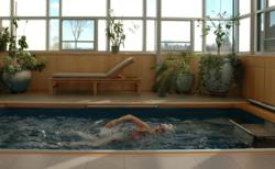 Endless Pool, Swimming Pool, Water Exercise, Indoor Pool, Swim Spa