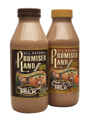 Midnight Chocolate Milk Quart Bottles_Promised Land Dairy