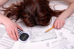 2013 Tax Season