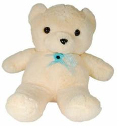 teddy bear nanny cam - hidden camera security system review tips