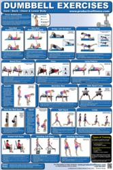Dumbell Exercises Fitness Poster