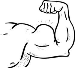 Scott Tischler, Scott Tischler secrets to rapid muscle recovery