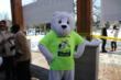 Polar Bear at Courage Polar Bear Dip
