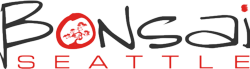 Internet & Digital Marketing Agency | Seattle | Bonsai Media Group