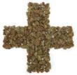 New Association Created to Advocate for Medical Marijuana Patients,...
