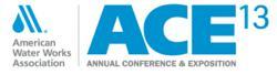 ACE13 Logo